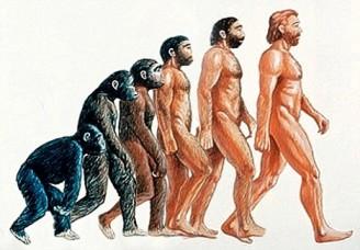 1 evolucion2